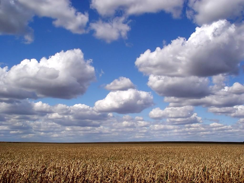 Cloud-field